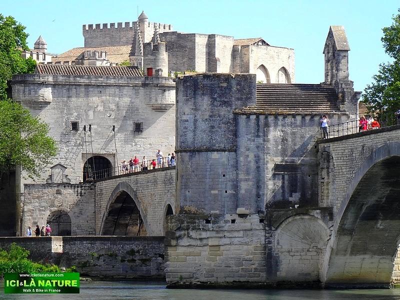 32-provence avignon bridge castle