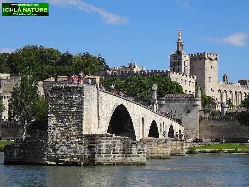 33-provence avignon castle bridge