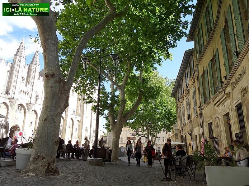 36-provence avignon papal castle