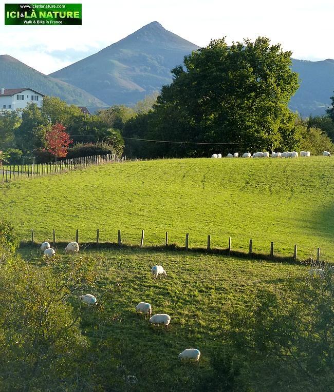 42-basque country mountain