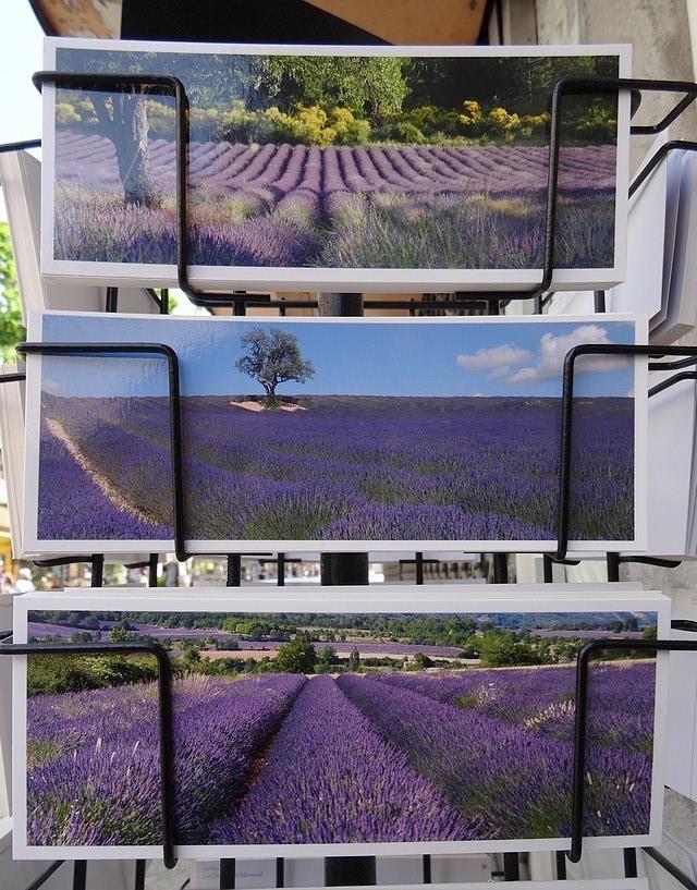 43-postcards provence