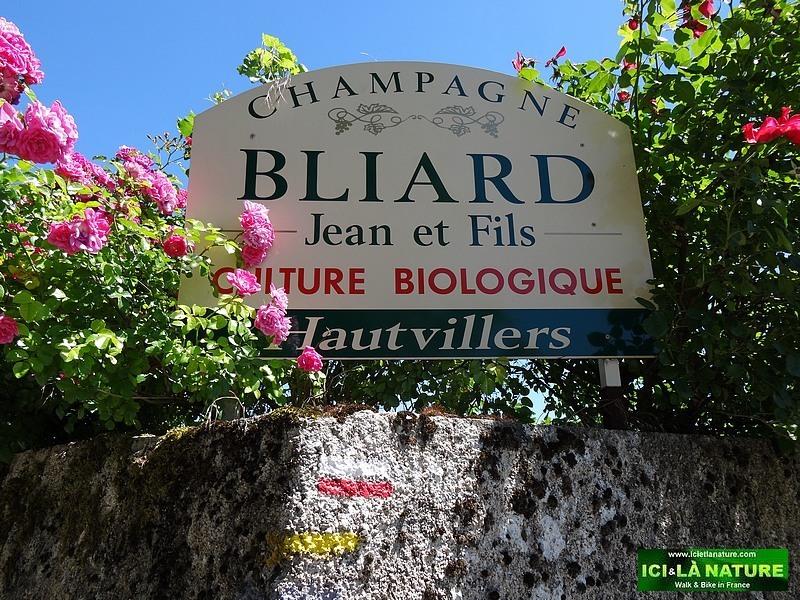 52-champagne biologique bliard