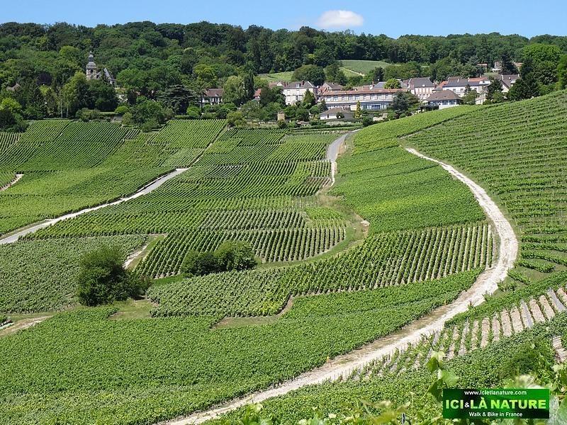 69-village hautvillers champagne