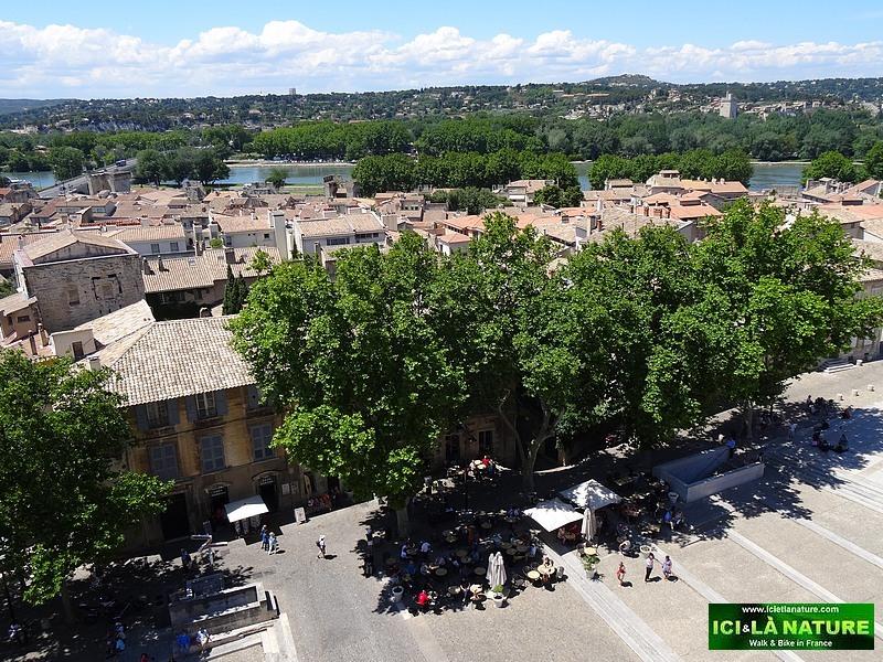 50-avignon provence landscape