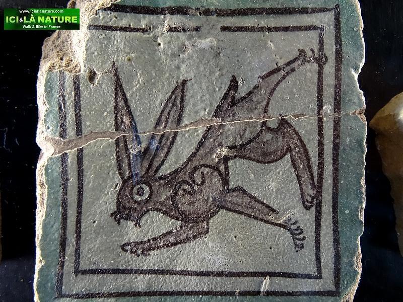 51-provence crazy rabbit avignon