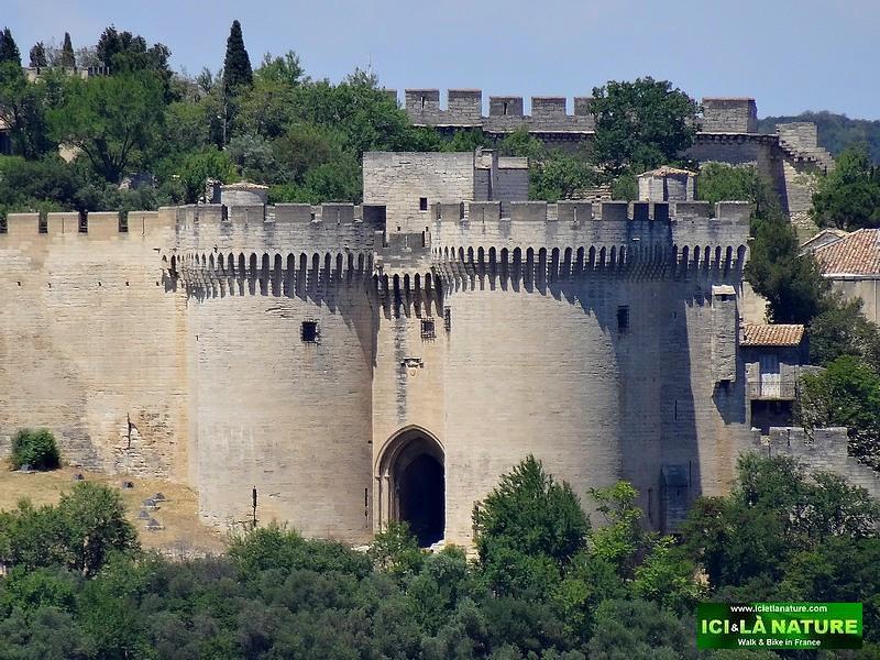 53-fort saint jean avignon provence