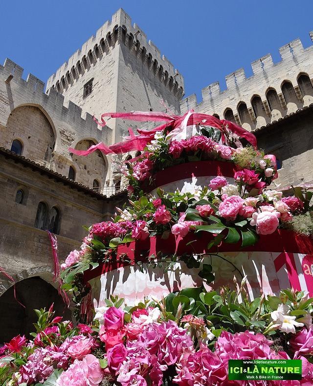 55-castles in france avignon