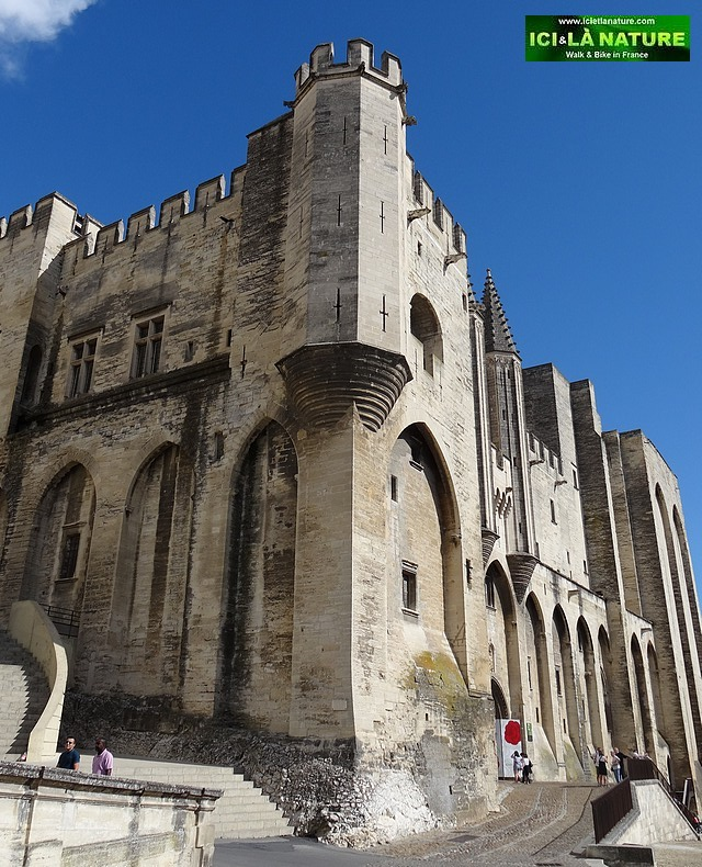 57-old castles in france avignon