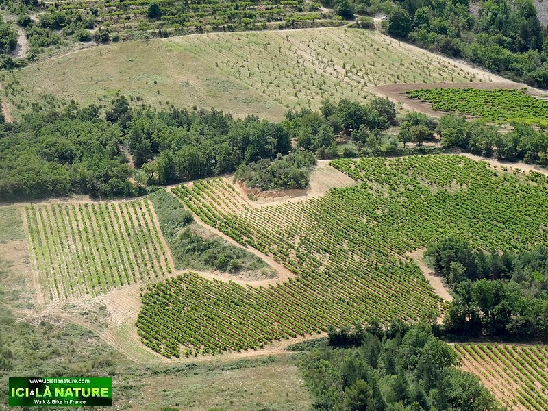 07-landscape mont ventoux