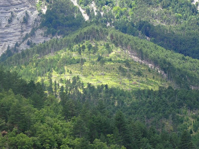 17-landscape provence mont ventoux