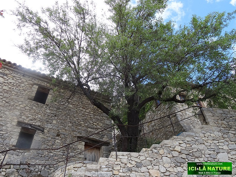 19-old street village provence