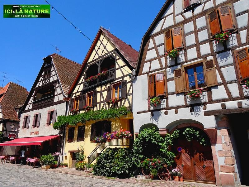 44-alsace village bergheim
