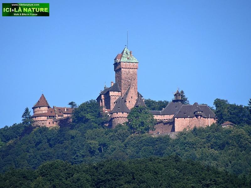 55-haut koenisbourg castle france