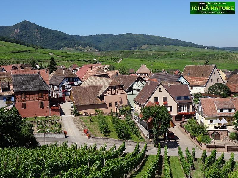 61-village alsace wine route france