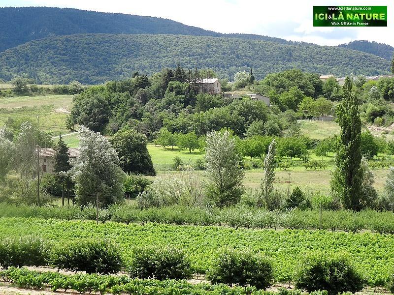 50-provence landscape image
