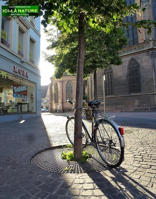 25-bike and sun