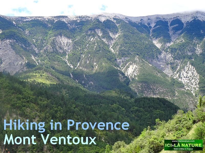 33-vaucluse mont ventoux