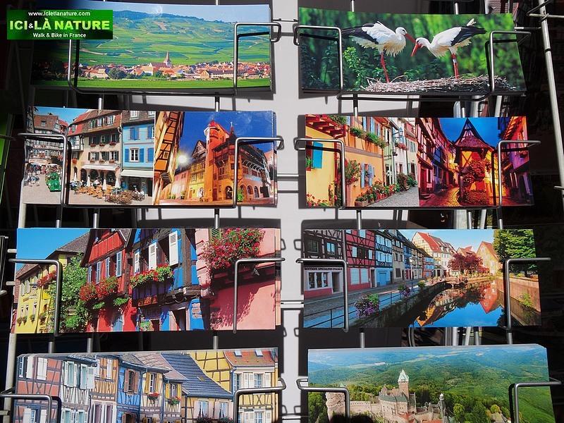 50-alsace landscapes colmar