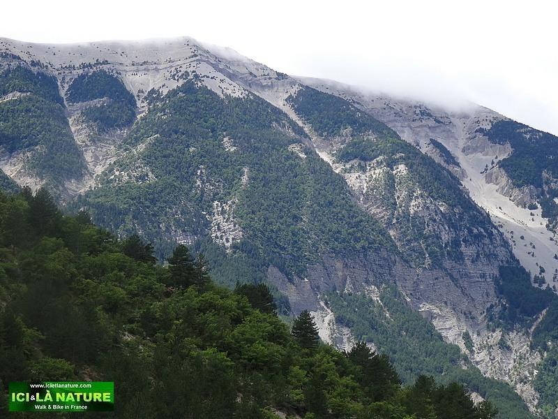 53-biking mont ventoux provence