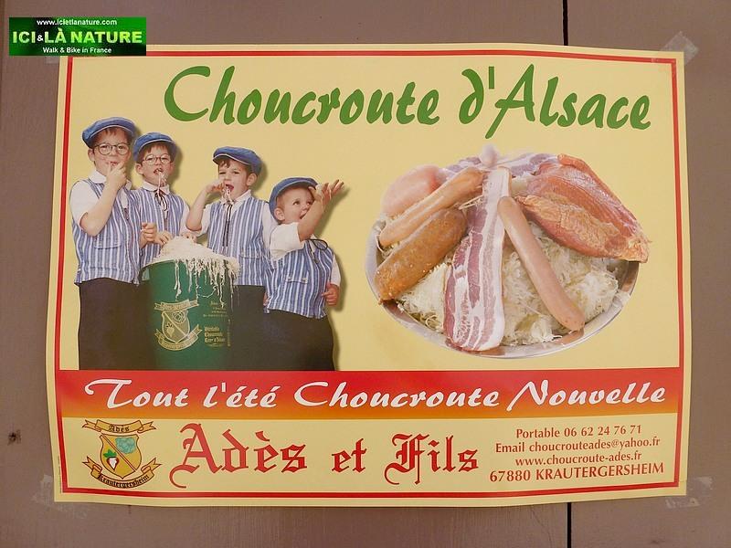 65-gastronomy alsace choucroute
