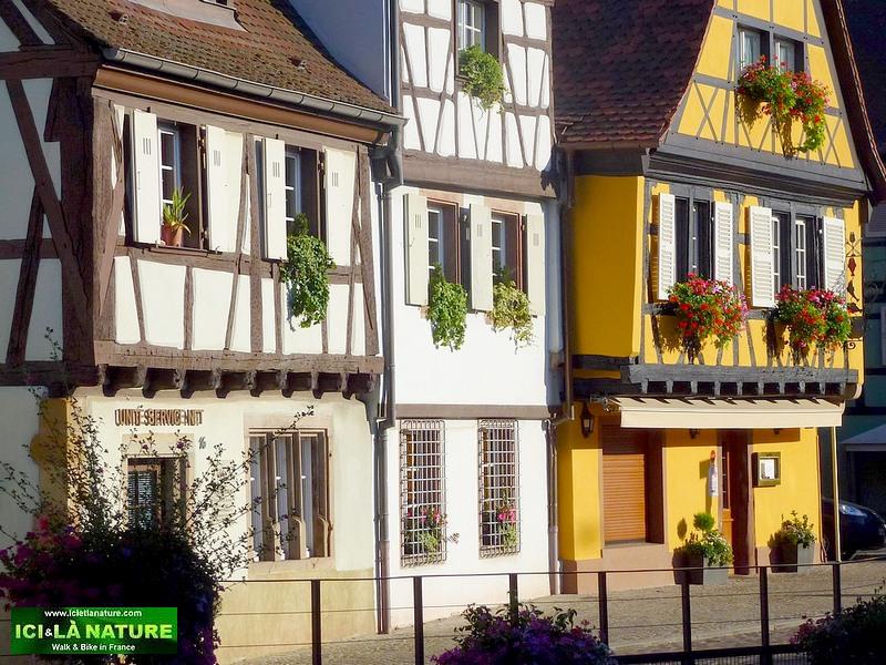 83-rues de colmar maisons alsaciennes