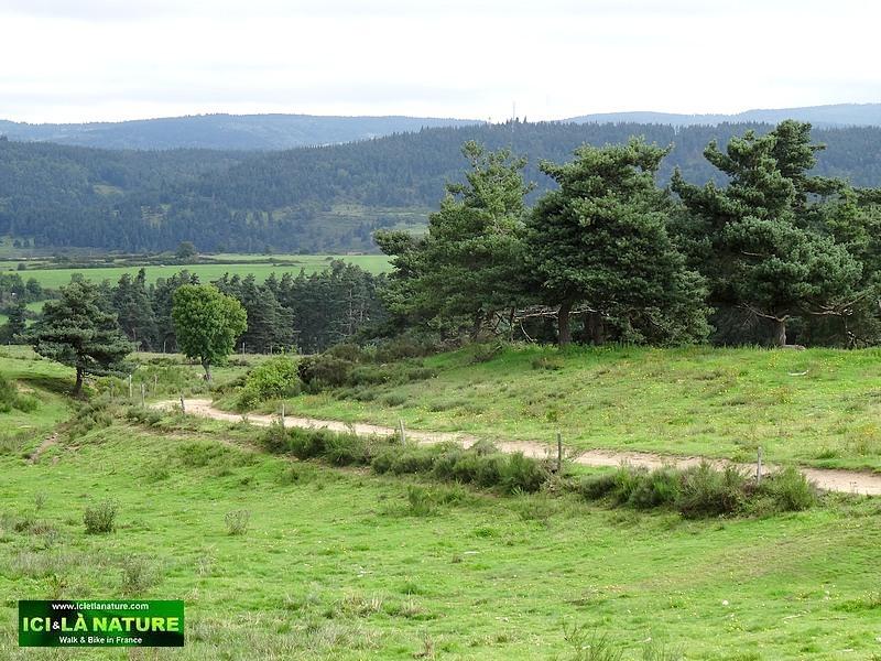 25-lozere landscape stevenson way