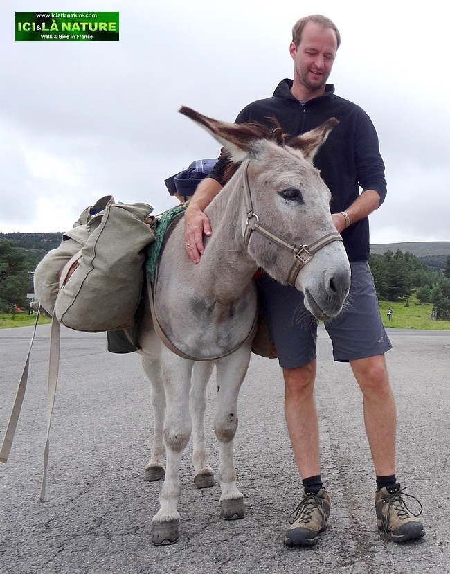 32-walking the way of stevenson with a donkey