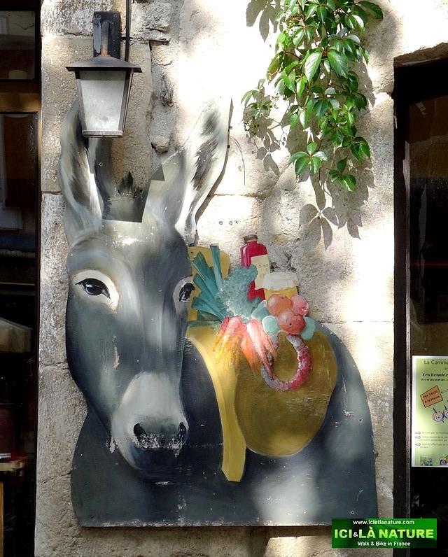 66-Modestine stevenson' s donkey name france