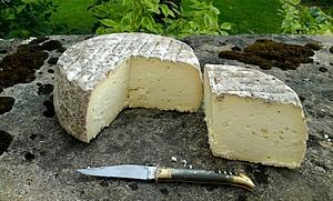 82-fromage de lozere