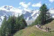 mont blanc tour trekking alps france