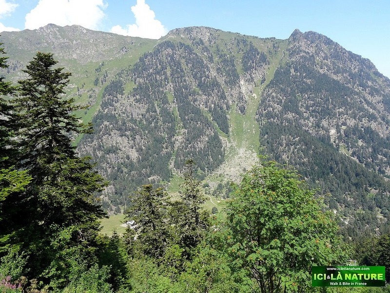 15-pyrenees mountains france