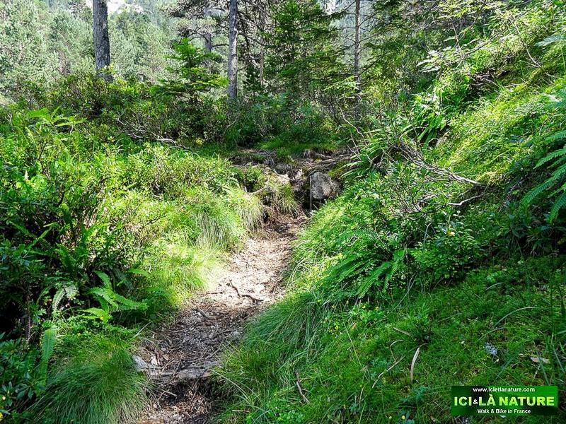 39-pyrenees mountains path