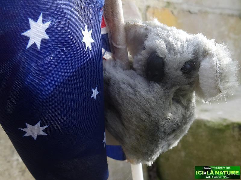 07-AUSTRALIA IN GREAT WAR