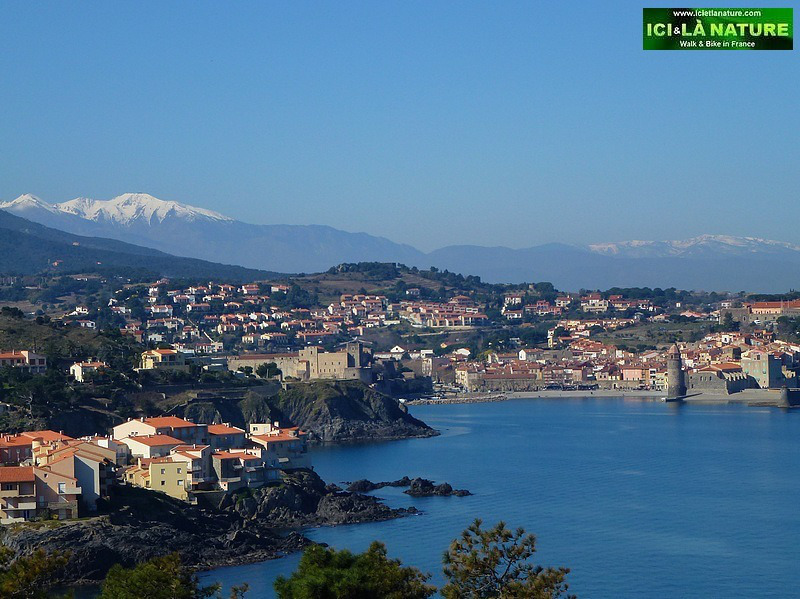 15-walking-holidays-south-france-collioure