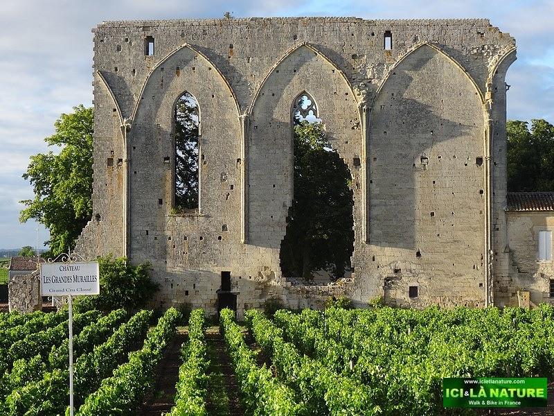 33-saint emilion wine chateau les grandes murailles