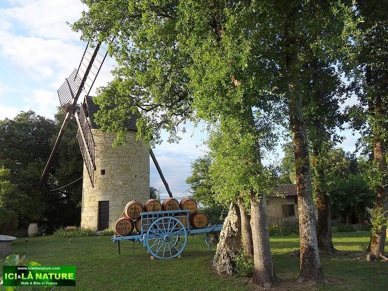 36- bordeaux chateau-haut-sarpe-saint-emilion