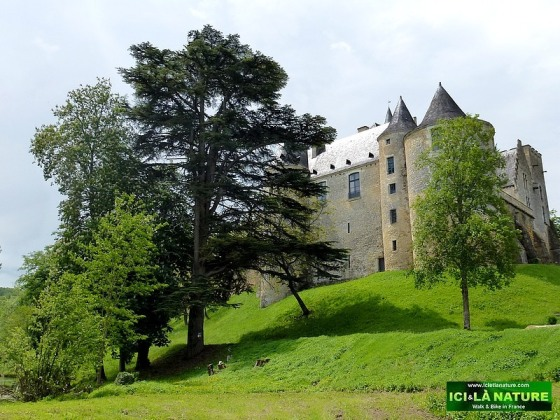67-old castle france dordogne