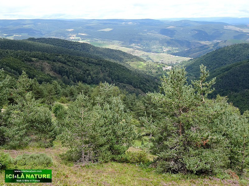 81-mont-lozere-walking-the-way-of-stevenson