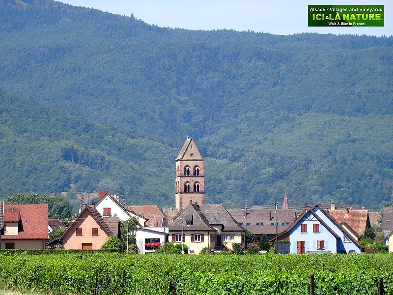 02-alsace cycling travel