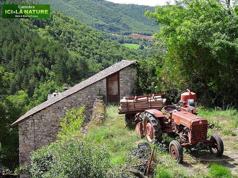 24-vieux tracteur massey ferguson