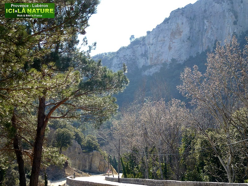 27-beautiful road in provence