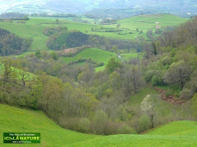 The camino frances way of st james climbing from - St jean pied de port to santiago distance ...