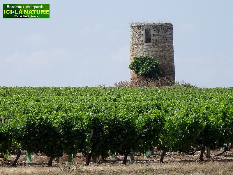 13-holidays in bordeaux country