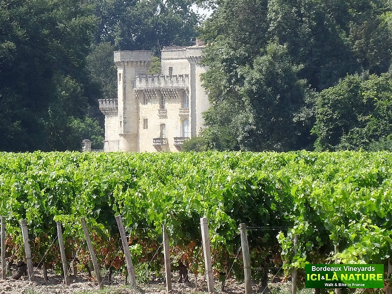 19-bordeaux vineyards chateau de lamarque