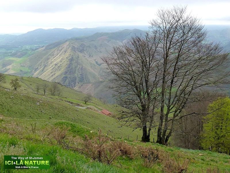 27-landscape mountain camino santiago