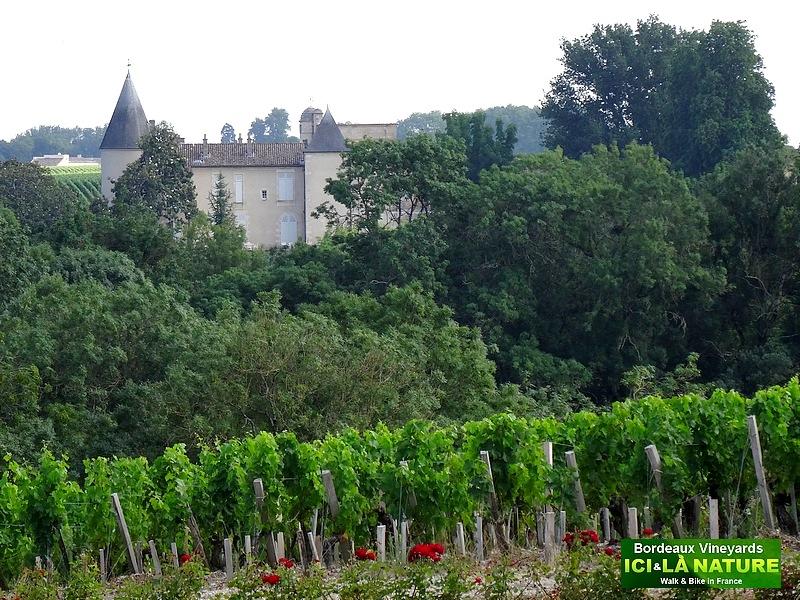 28-bordeaux fine wine Château Lafite Rothschild
