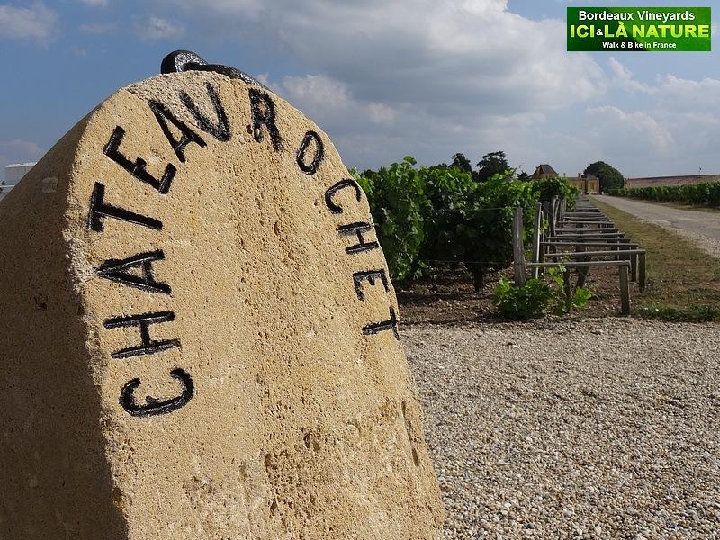 36-chateau rochet bordeaux