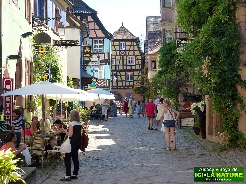 37- walking holidays alsace