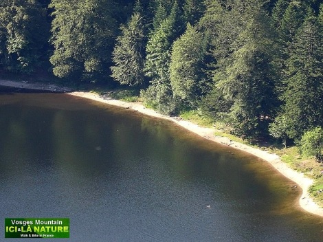 47-paysage lac des vosges