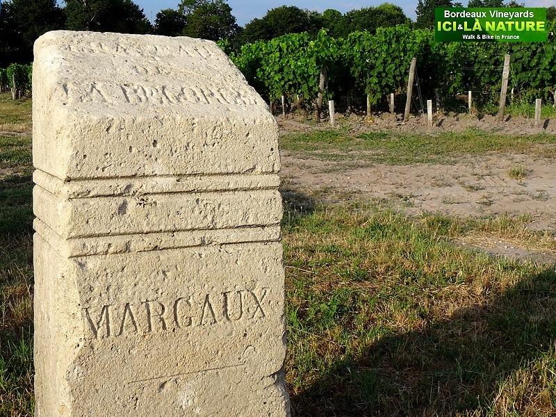 54-margaux chateau labegorce